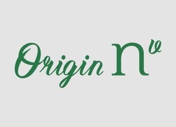Origin NV